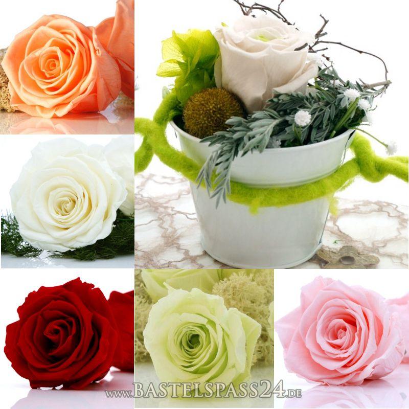 tischdeko hochzeit geburtstag mit pr parierte rosen langzeitrosen f r eine nat u. Black Bedroom Furniture Sets. Home Design Ideas