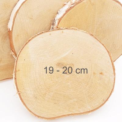 Grosse Birkenscheiben 20 Cm Holzscheiben Kaufen Bastelspass24 De