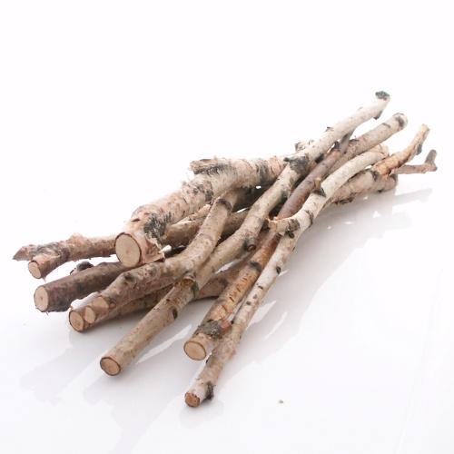 Birkenzweige birken ste 10 st b ndel l 50 cm echtes birke for Birkenstamm deko kaufen