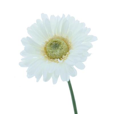 Seidenblumen Kunstblumen Bastelspass24de Floristik