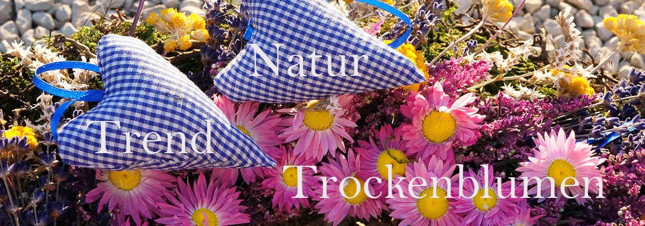 Trockenblumen und Naturfloristik neue Trendde