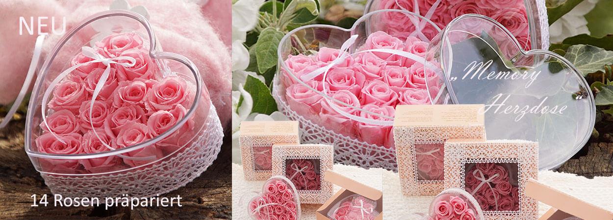Präparierte Rosen ausgefallene Geschenkidee
