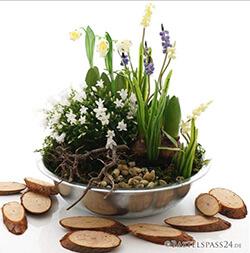 Pflanzschale Frühjahr selber dekorieren
