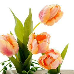 Tulpen Seidenblumen kaufen